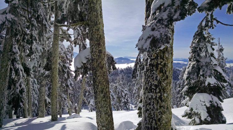 Southern Oregon in Winter - Photo: Pete Wallstrom